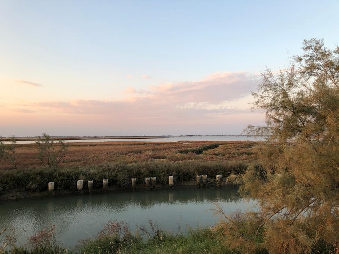 Torcello e la laguna