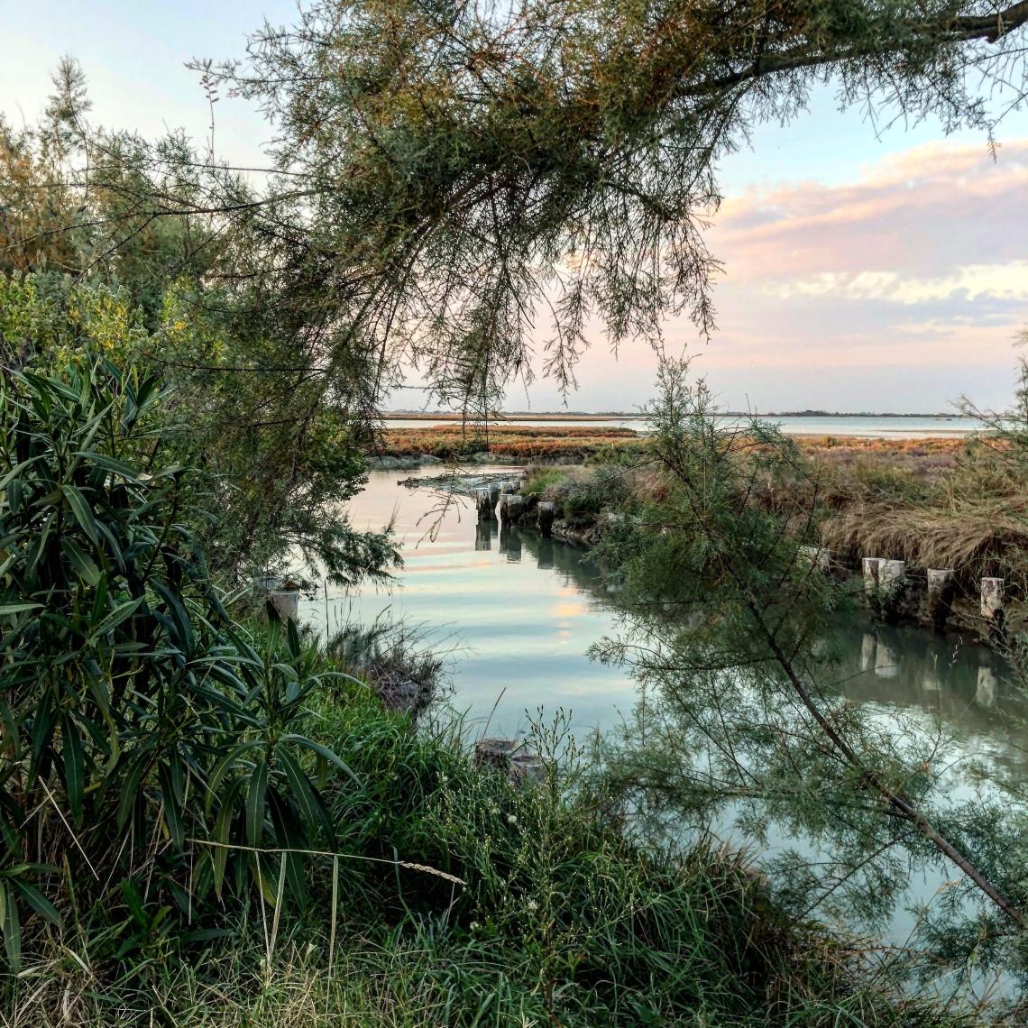Laguna di Venezia vista dal canale di Torcello